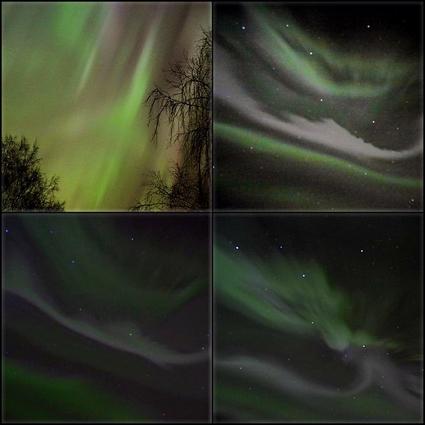 Foto: Janne Åkesson/ SWEPIX